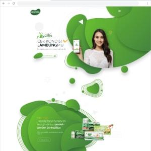 Promag Website